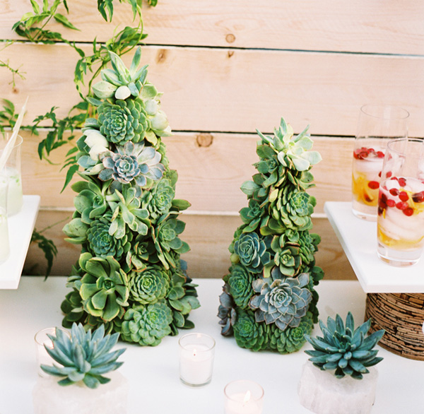 Decora tu boda navideña con cactus
